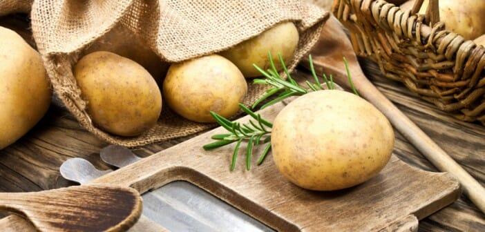 La pomme de terre fait-elle grossir ?