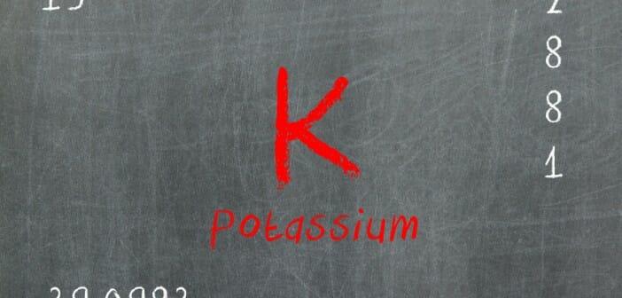 Le potassium : un équilibre fragile