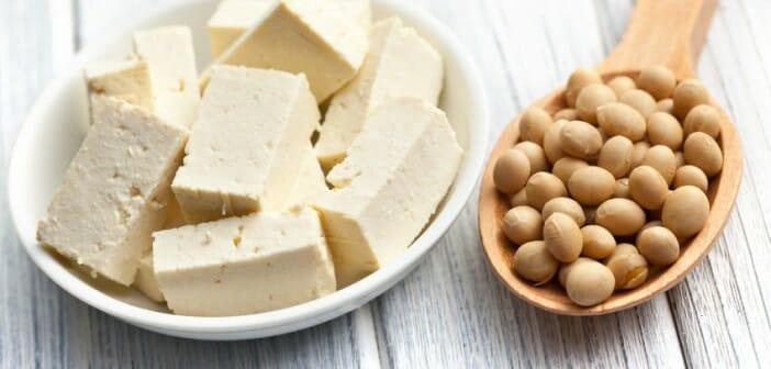 Le tofu un allié pour maigrir