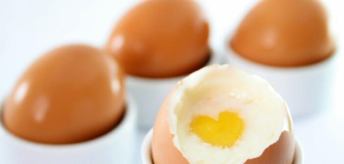 Quels sont les aliments les plus riches en prot ines - Aliment riche en calorie ...