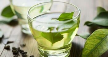 Le thé vert fait-il vraiment maigrir ?