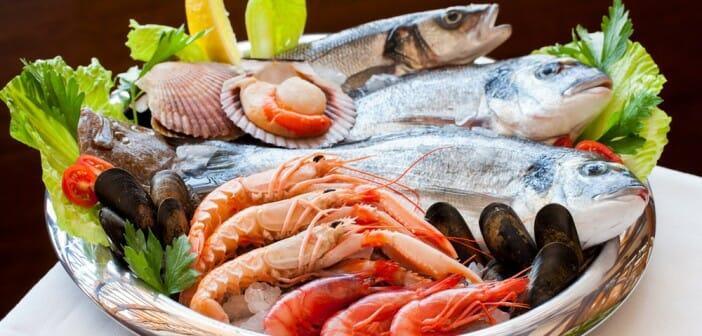 Les fruits de mer sont-ils caloriques ?