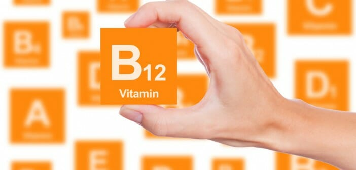 La vitamine b12 fait elle grossir for Vitamine pour grossir
