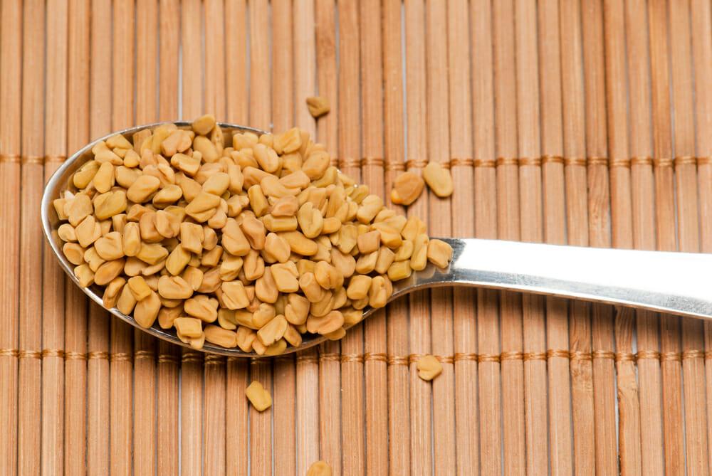Le fenugrec fait il grossir for Vitamine pour grossir