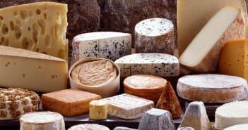 Le fromage allégé fait-il grossir ?