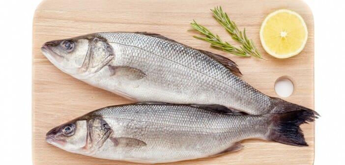 Le loup poisson gras ou maigre - Cuisiner le bar ...