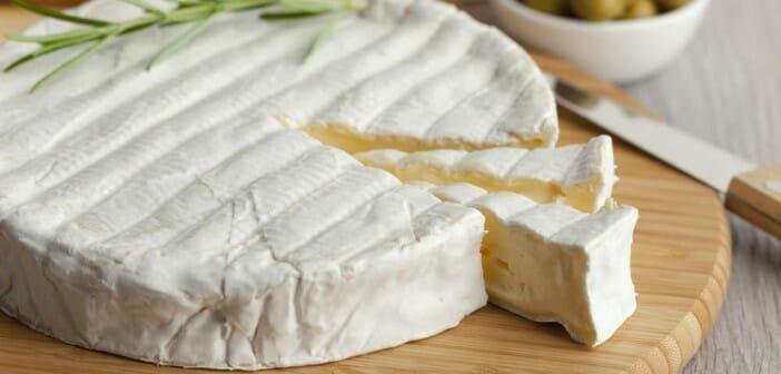 Le Brie est-il calorique ?