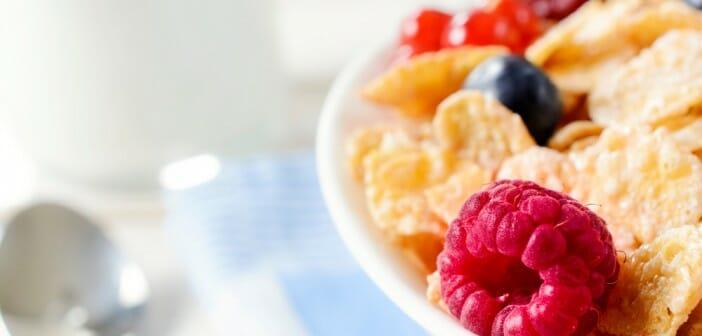 Menus diététiques du programme Spécial K