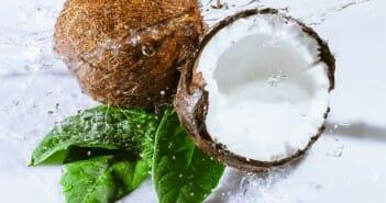 L'eau de coco est-elle calorique ?