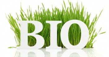 10 produits bio pour maigrir