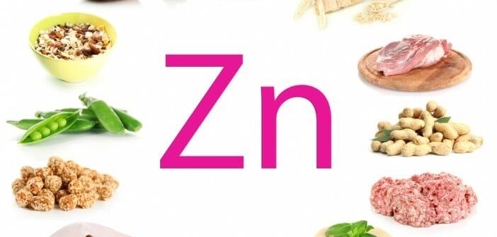 Le zinc fait-il maigrir ?