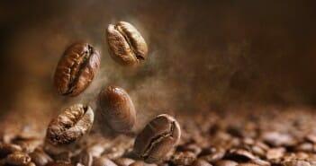 Les graines de café font-elles maigrir?