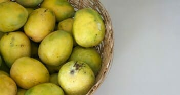La mangue africaine fait-elle maigrir ?